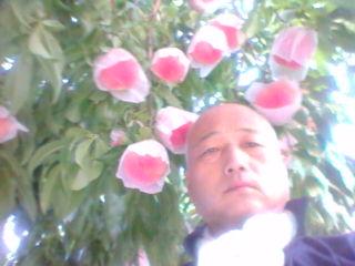 20120831060009.jpg